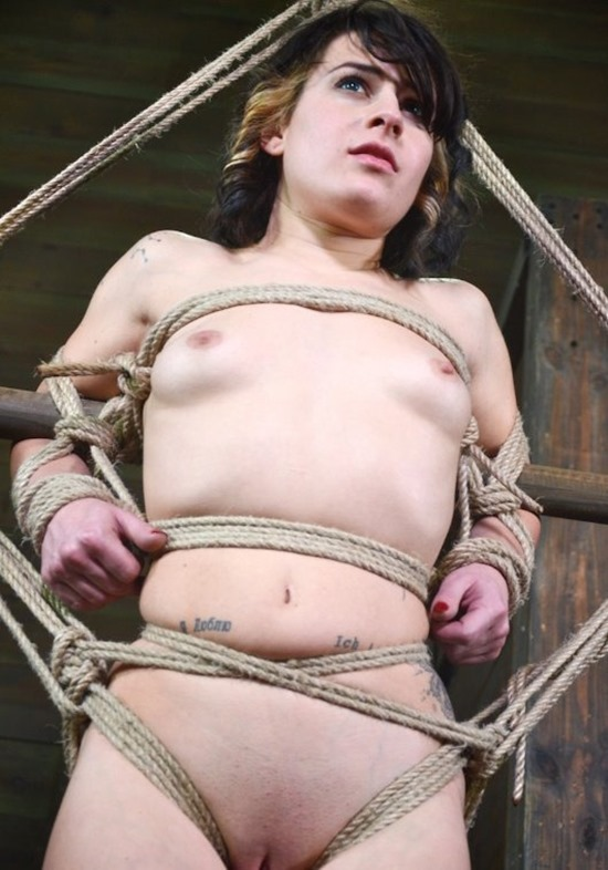 HardTied Submission
