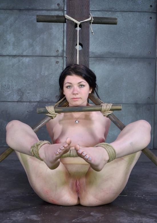 HardTied Tied Up